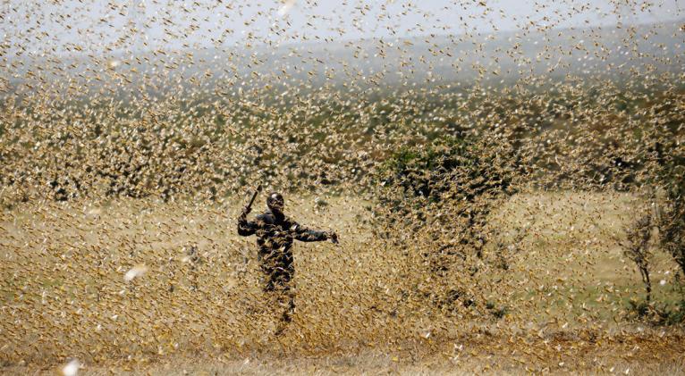 """Las organizaciones internacionales alertan sobre una situación humanitaria """"excepcionalmente compleja"""" y """"sin precedentes"""" en la región, que puede llevar a unas consecuencias muy graves para su población. Foto: Reuters."""